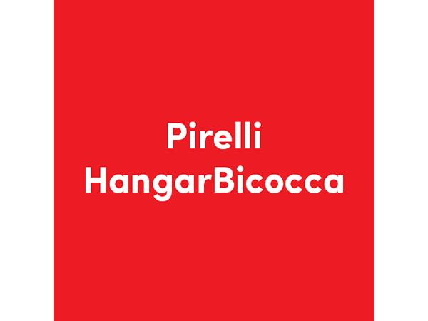 design-solving_logo_workfor_hangar-bicocca