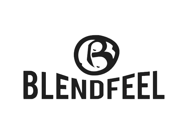 design-solving_logo_workfor_blendfeel